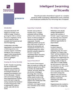 Tricentis Case Study Cover Page